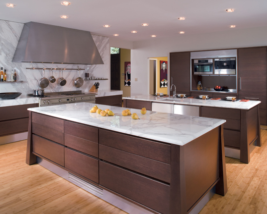 Transitional kitchens a fusion of both traditional and for Transitional kitchen designs photo gallery
